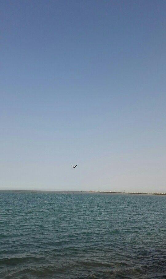 بحر ينبع Celestial Water Beach