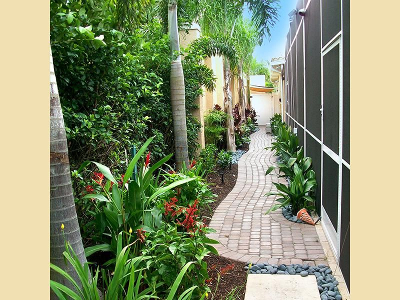 This path was created by grants gardens at a lakewood ranch home the narrow space is used to it - Tall trees for small spaces style ...