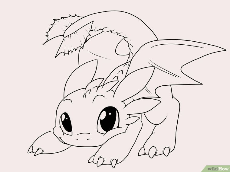 Draw Toothless | Pinterest