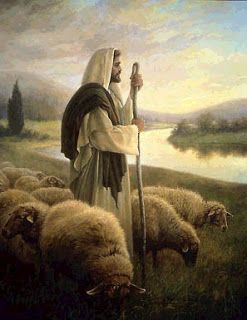 "Jesus Christ told Peter, and told us to, ""Feed my Sheep.""   What does that mean?"