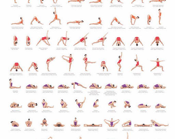 Ashtanga Yoga Primary Series Poster | Ashtanga yoga ...