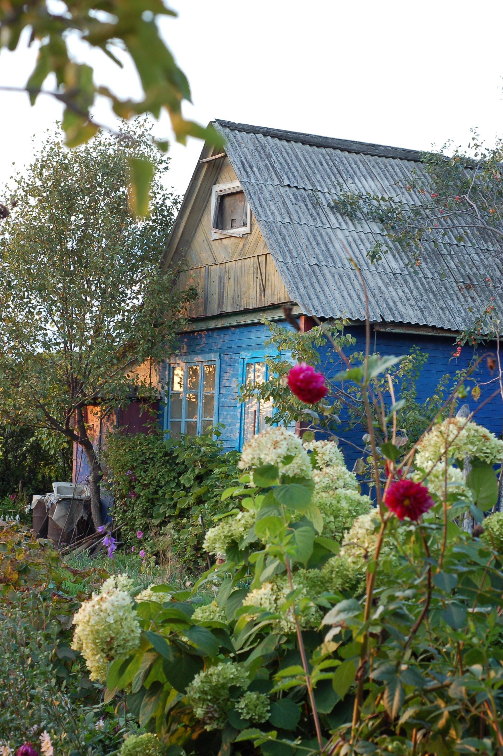Casette Russe Di Campagna so nice! (con immagini) | paesaggi, natura, luoghi
