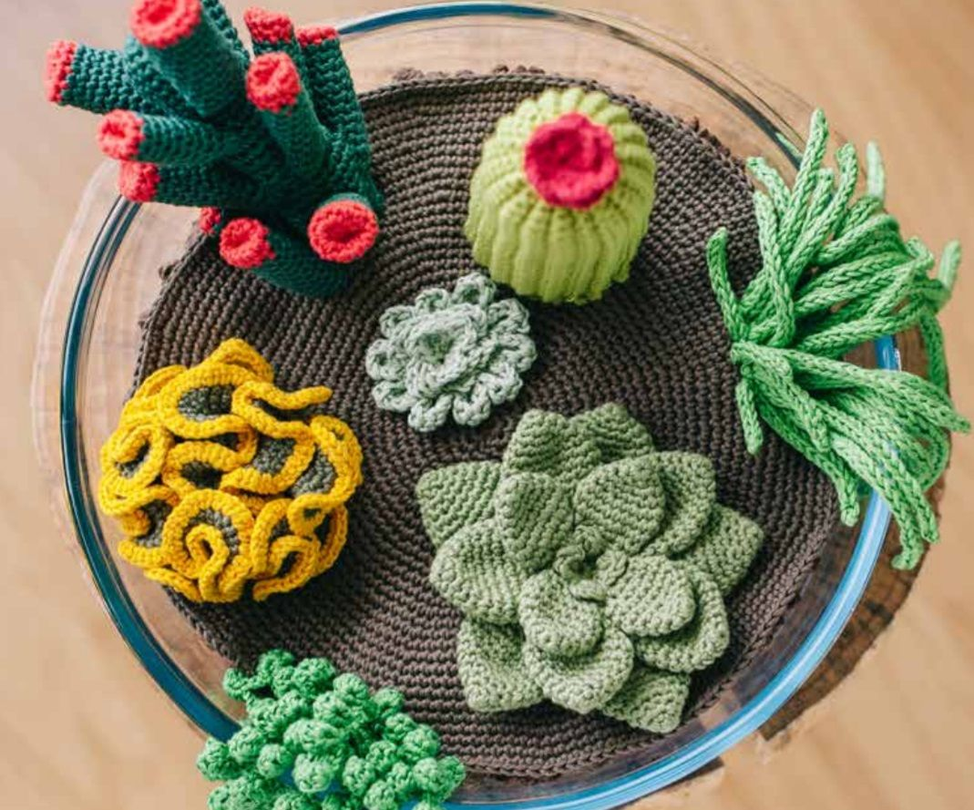 Free Crochet Pattern for Succulents Plants
