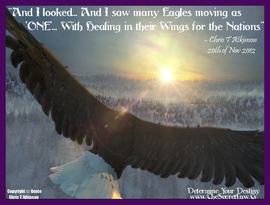 12 Eagles As One Inspirational Quotes And Sayings About Life Png 940 715 Pixels Picture Quotes Motivational Picture Quotes Inspirational Quotes Pictures