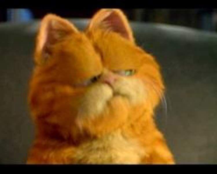 Garfield The Movie In 2020 Garfield The Movie Garfield Movies