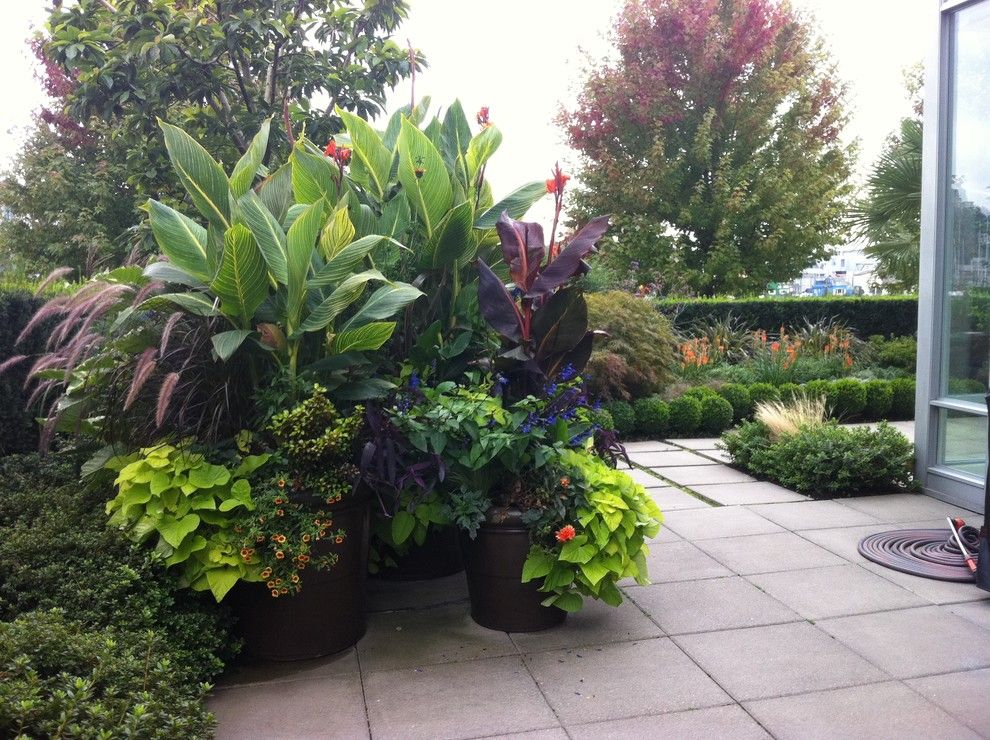 Large container gardens garden container design for Backyard plant design ideas