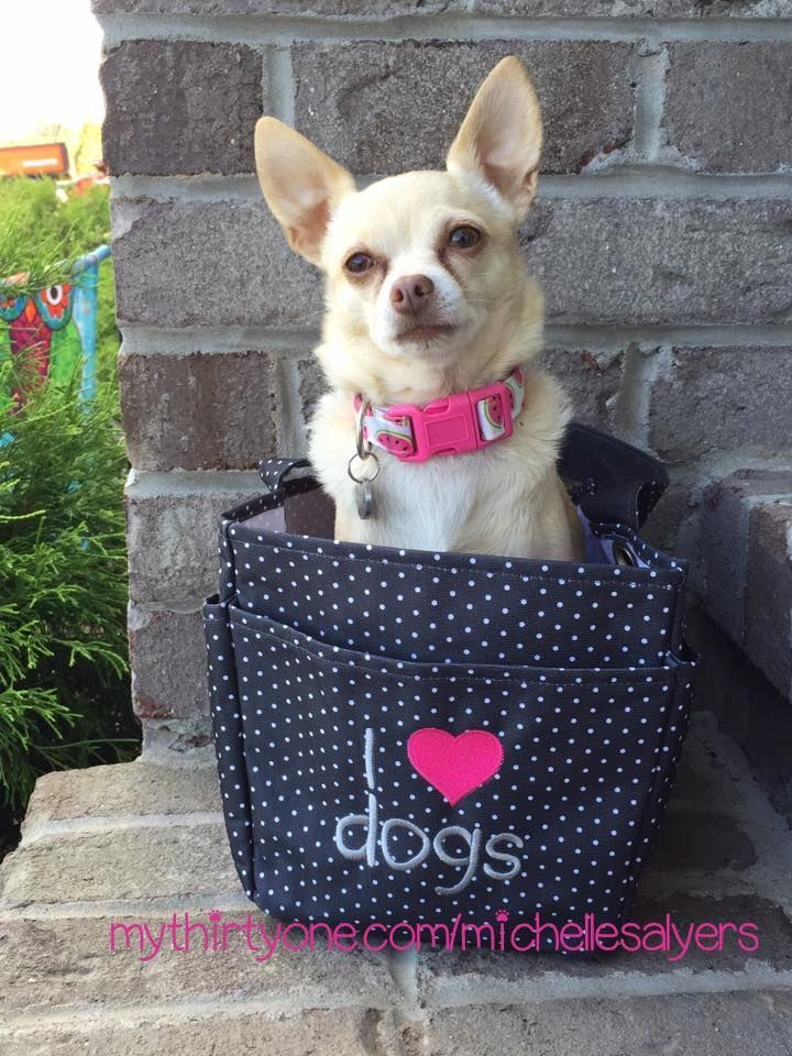 Pin By LuLaRoe Miriam McDonnell On Thirty One Gifts For PETS  Under $35 |  Pinterest