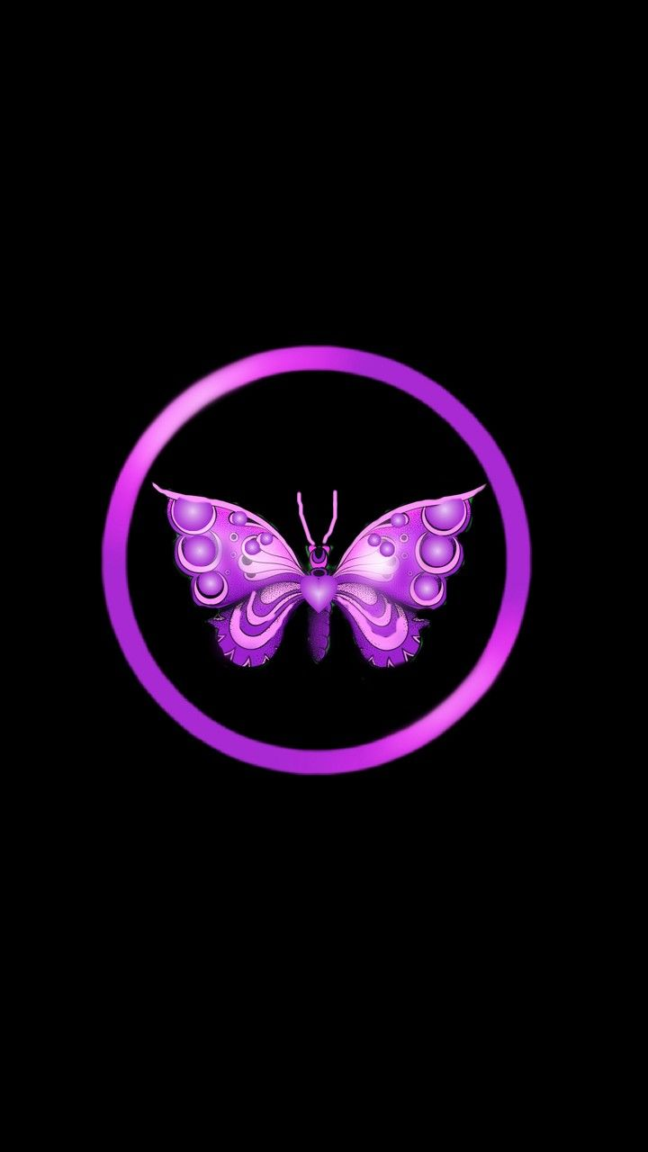 Black And Purple Black And Pink With Images Butterfly