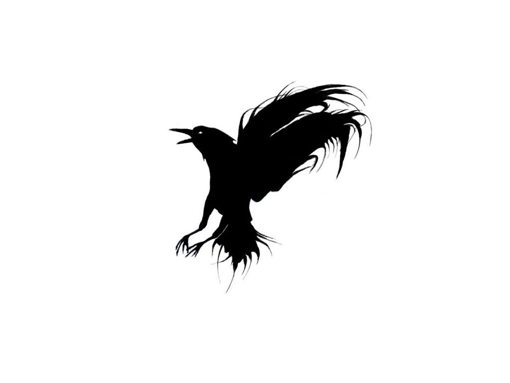 black evil crow landind down tattoo 1024 768 tattoo pinterest tattoo raven. Black Bedroom Furniture Sets. Home Design Ideas