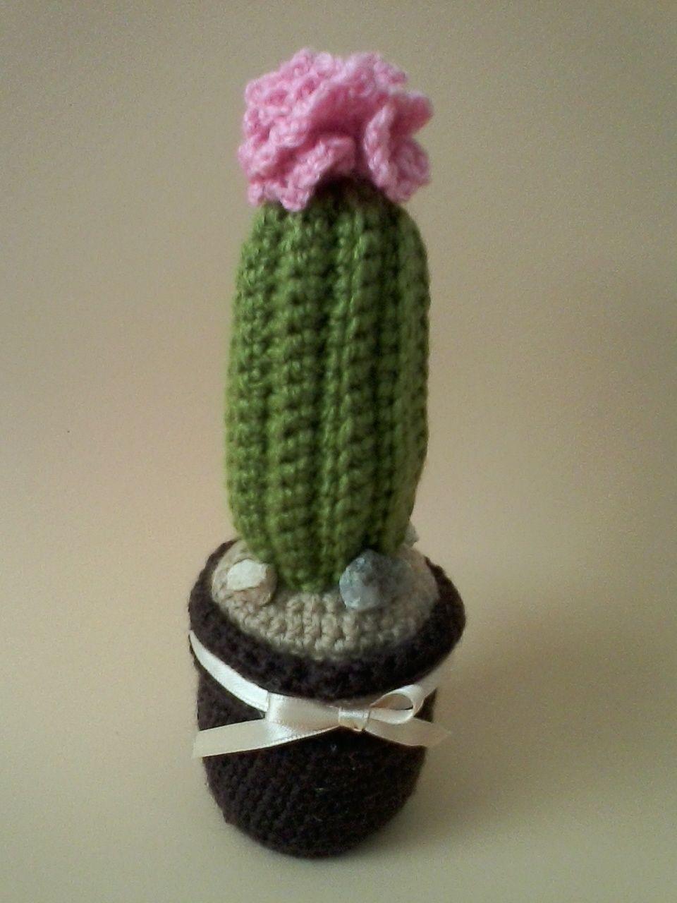 cactus – The Wool Monkey | 1280x960