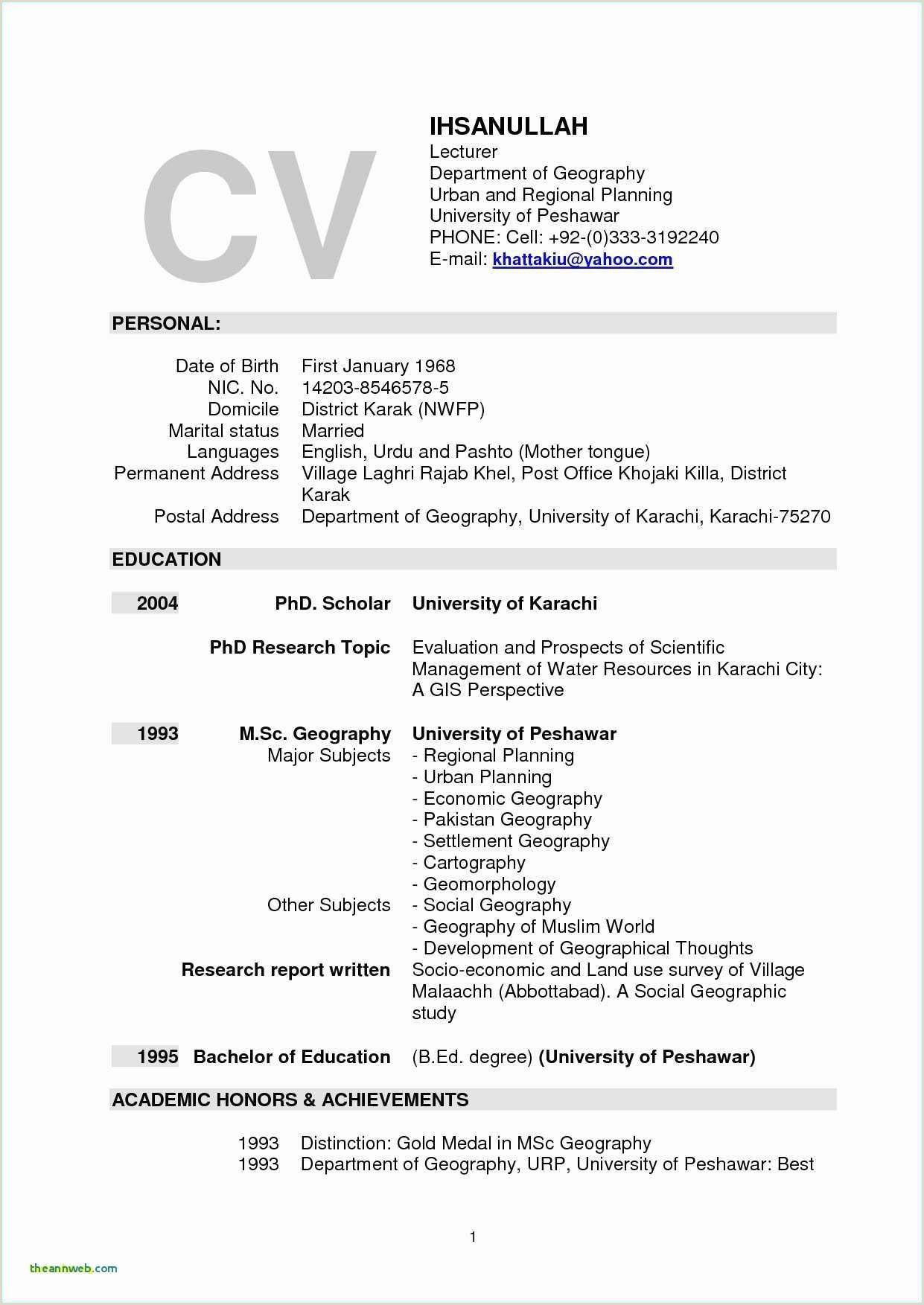 Division Essay Example Resume Examples Nursing Resume Examples Essay Examples