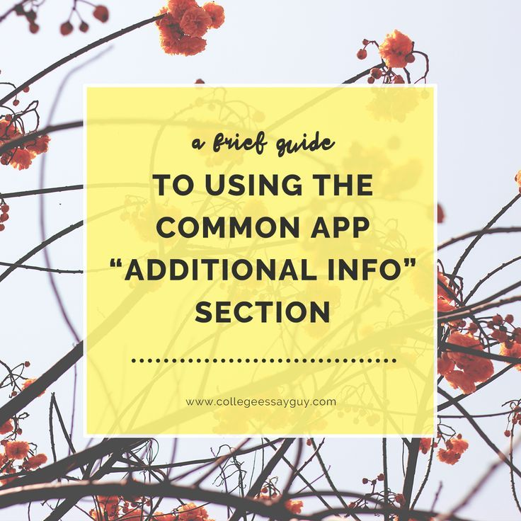 How to use the common app additional information section