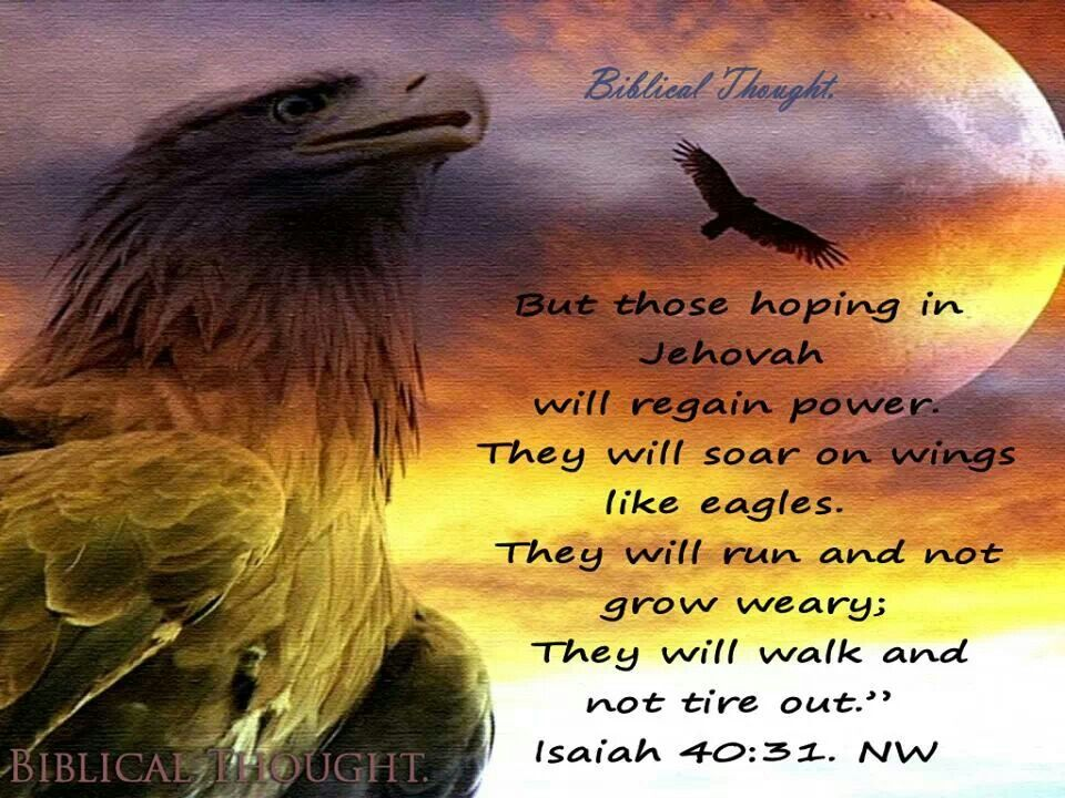 isaiah 4031 where jehovahs witnesses get their strength