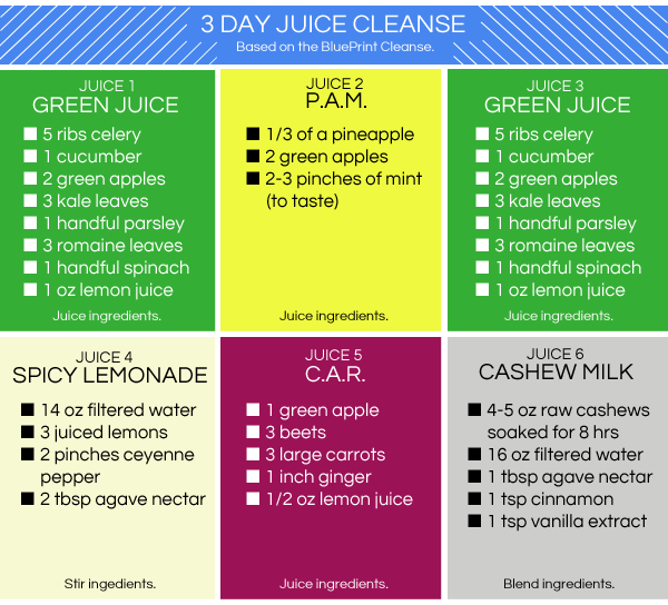 3 day juice cleanse recipes at home chekwiki not feeling a y juice cleanse try homemade one instead malvernweather Images