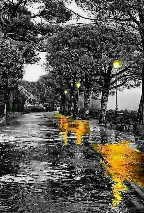 Splash Color Splash Photography Color Splash Art Splash Photography