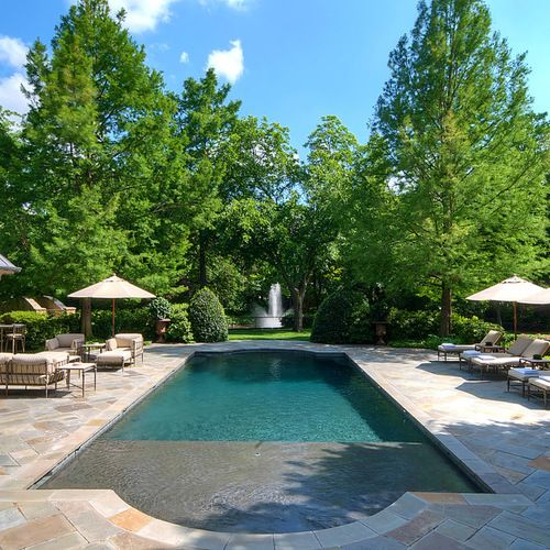Traditional Garden With Pool: Sun Shelf Pool Ideas, Pictures, Remodel And Decor