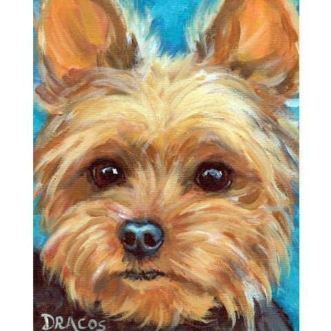 Yorkshire Terrier Dog Art 8x10 Print Of Original Painting By Dottie Dracos Yorkie Looking Off Yorkie Painting Watercolor Dog Animal Paintings