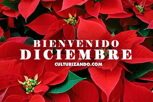 Diciembre es el duodécimo y último mes del año en el calendario gregoriano y tiene 31 días. Su nombre deriva de...