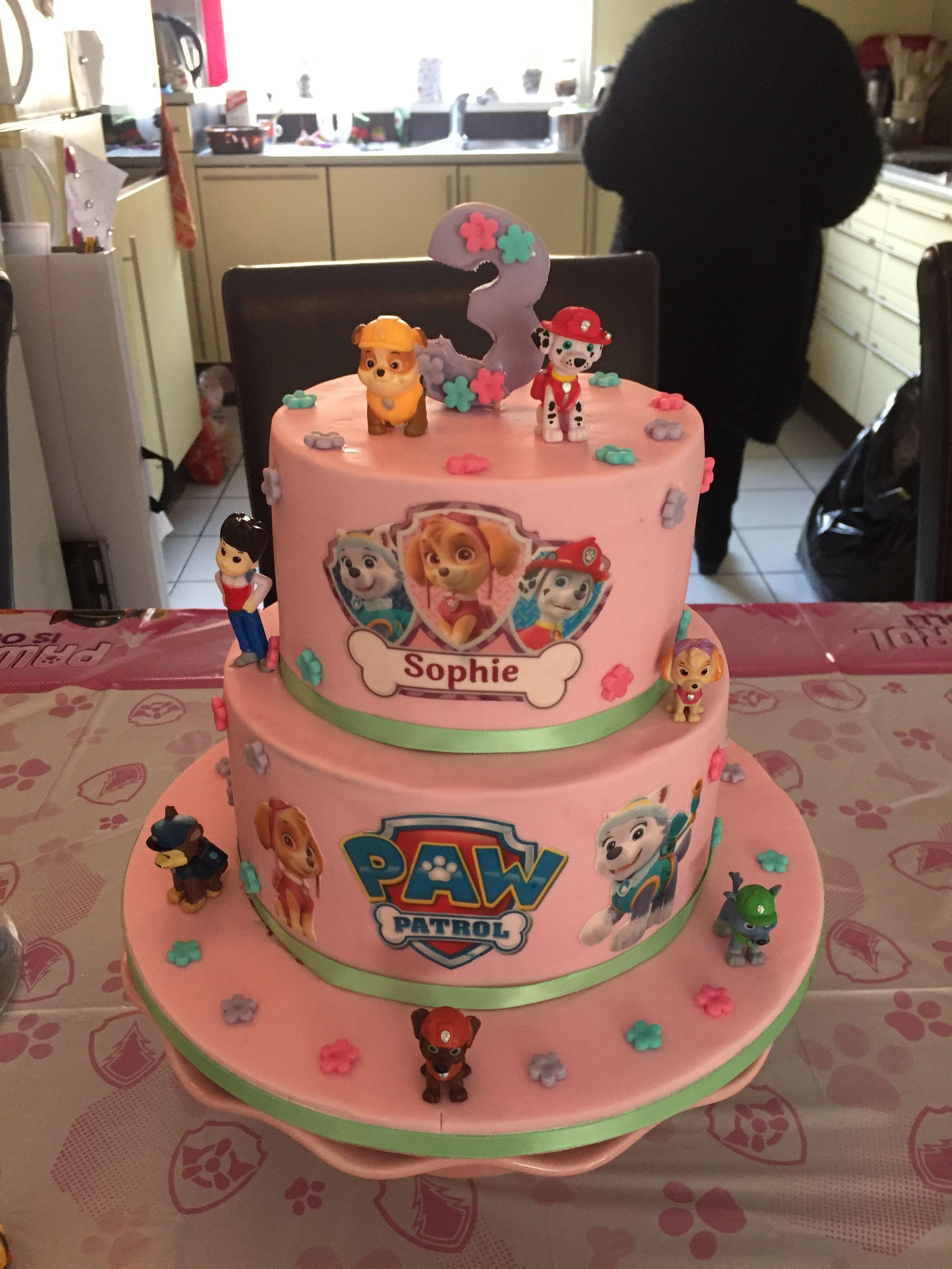 Paw Patrol Gluten Free Birthday Cake For My Girls 3rd