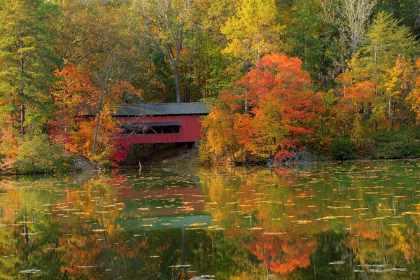 -An Old Covered Bridge In Alley Park, Lancaster Ohio - Cynthia Kidwell ...