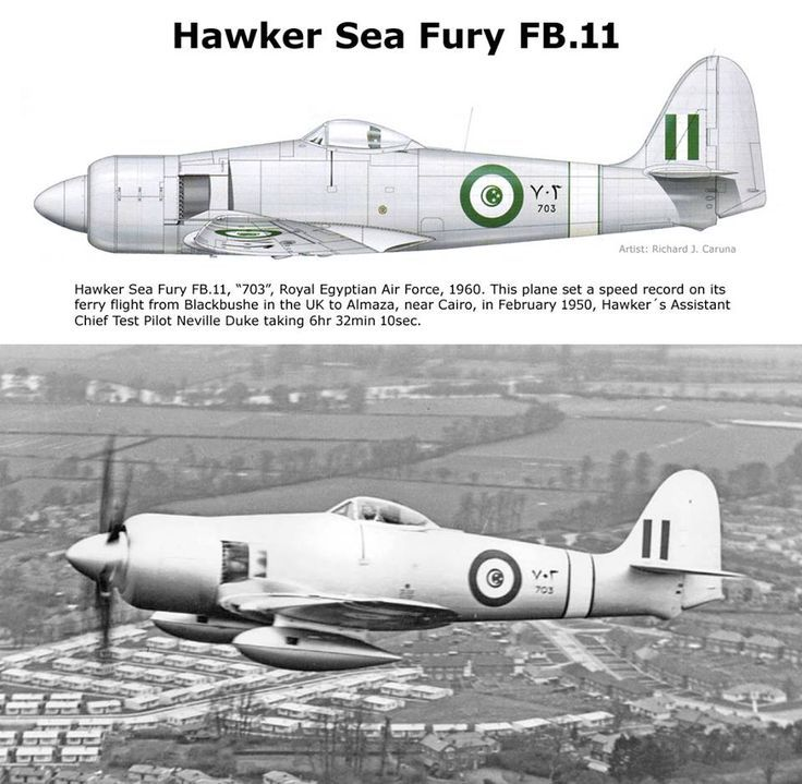 1/32 Hawker Tempest V - Special Hobby | Aircraft of World War II ... | 719x736