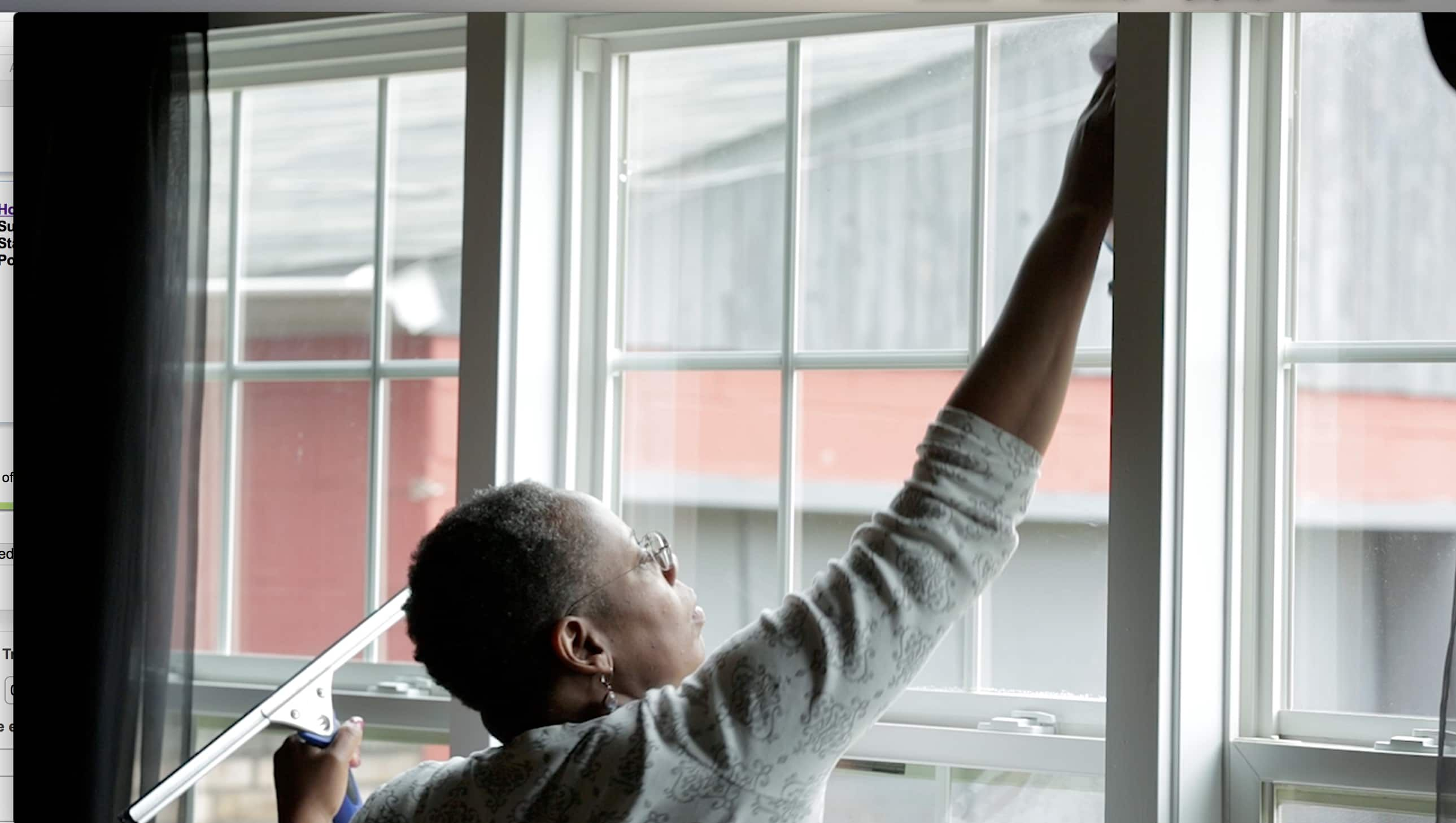 How Much Does Window Cleaning Cost? Window cleaner