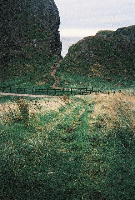 Via natureac http://natureac.tumblr.com/post/127328834253/nature-blog