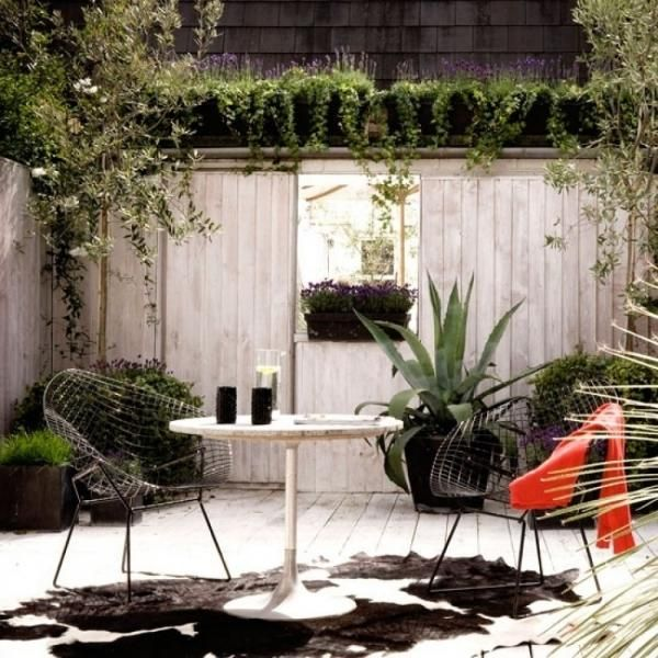 Garden Patio Mediterranean Style Tropical Plants Decking Assorted Plants  Mirror Whitewashed Wall Fence Fencing Table Animal Skin Rug Real Home L Etc  Pub ...