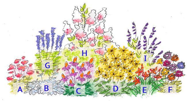 DIY Cut Flower Garden   Enjoy Fresh Cut Flowers From Your Backyard Spring  Through Fall /