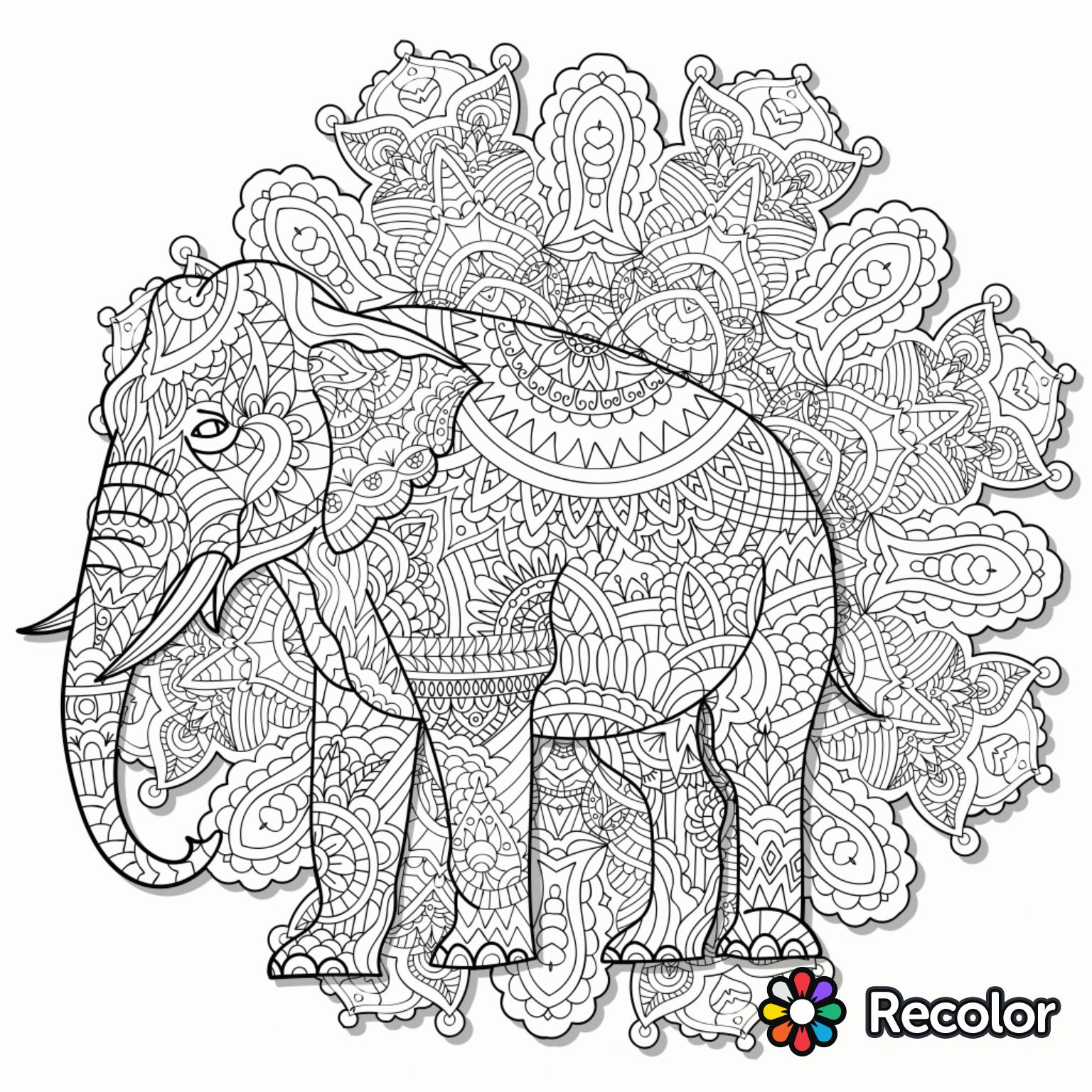 Elephant coloring page | Recolor coloring app | Colouring ...