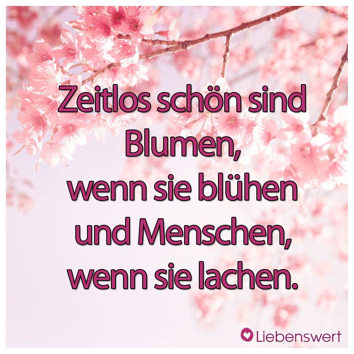 Zeitlos schön sind Blumen, wenn sie blühen und Menschen, wenn sie lachen. #sprüche #blumen #menschen #lachen