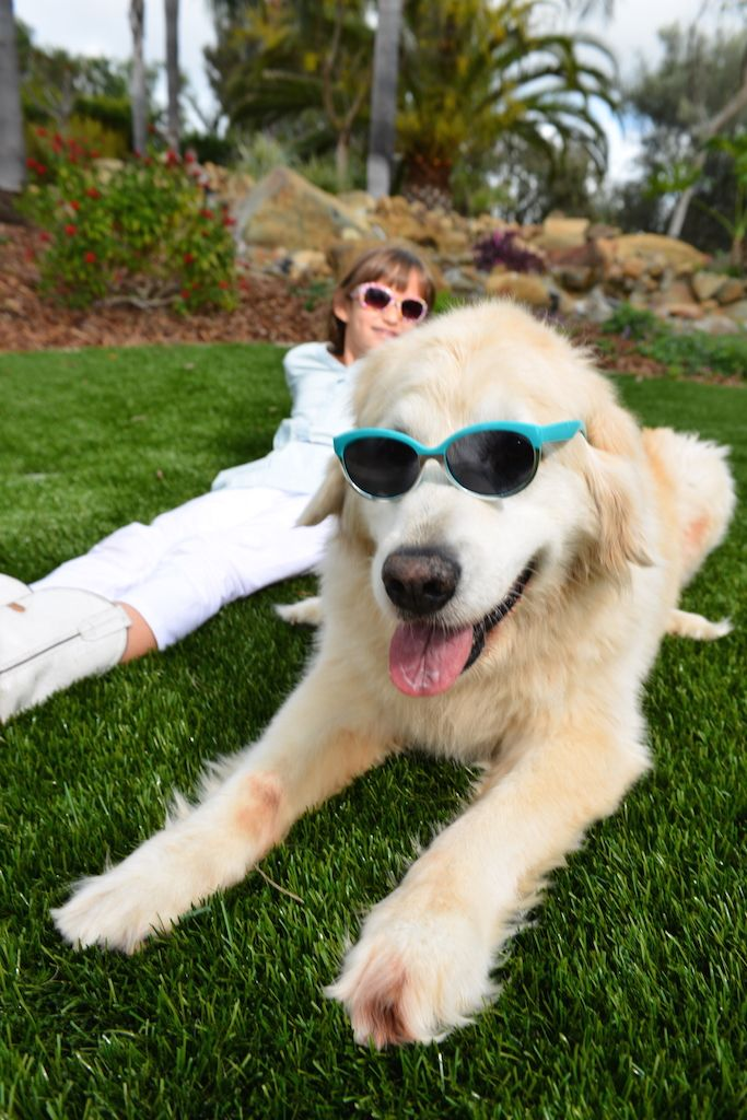 Whatever Your Outdoor Living Spaces Ideas Are EasyTurf Can Save You Money Time