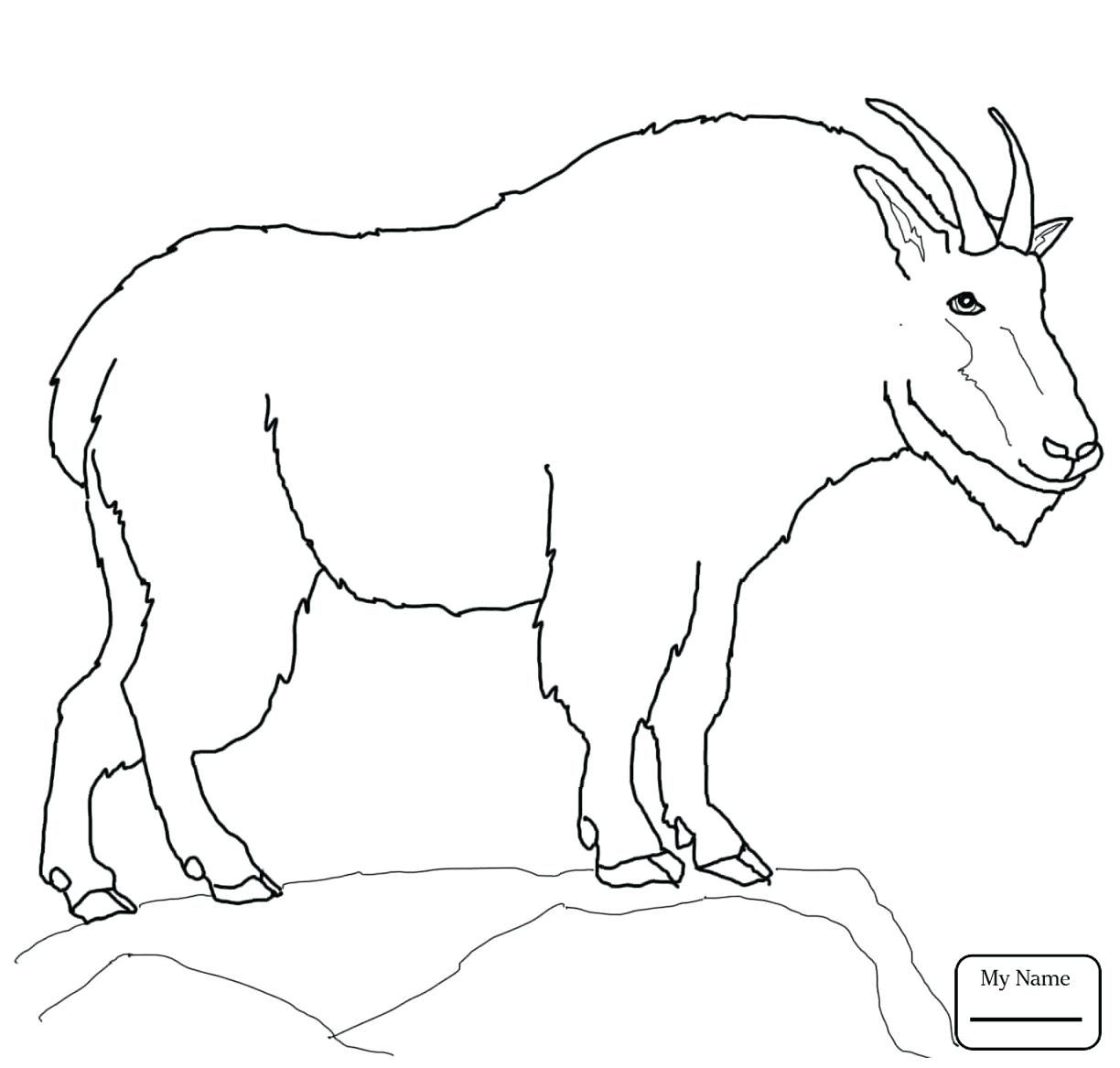 Mountain Goat Coloring Pages Download In 2020 Farm Animal Coloring Pages Coloring Pages Animal Coloring Pages