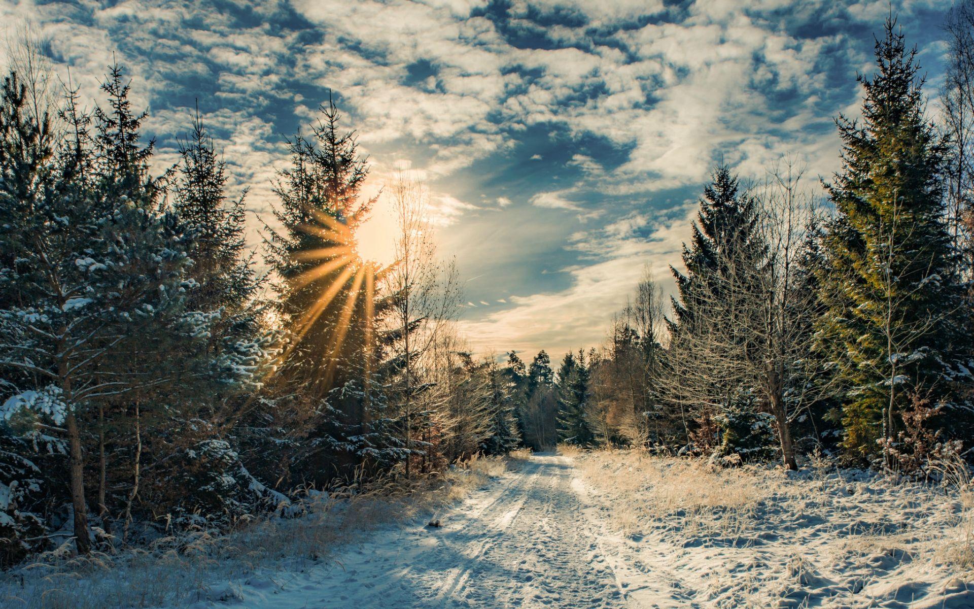 A Winter Season [19201200]