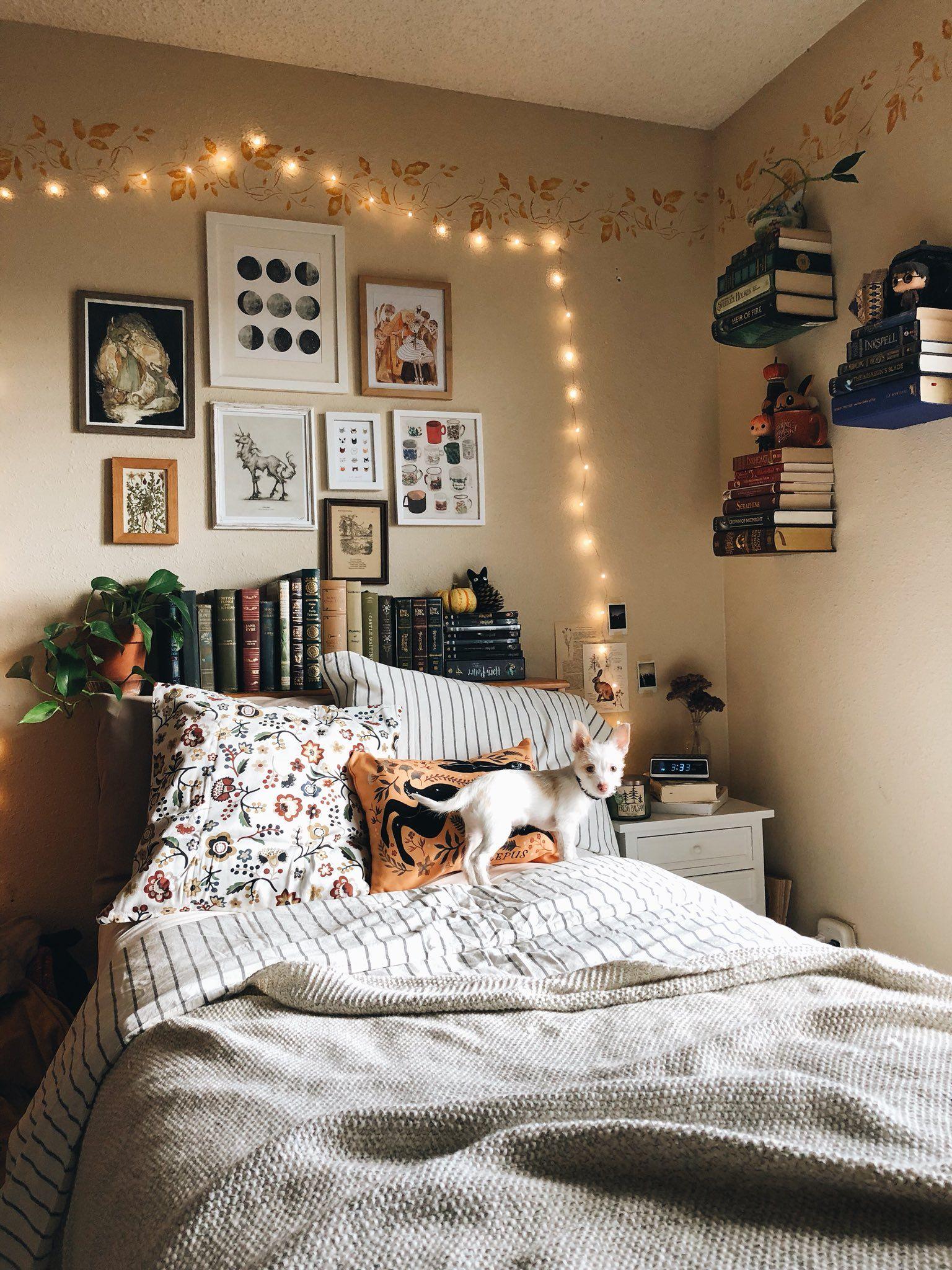 Aesthetic Dorm Room: Bedroom Design, Aesthetic