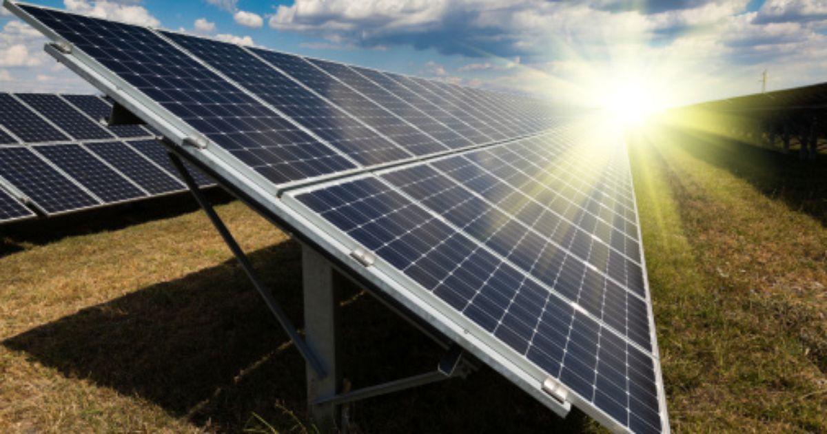 A Lone Star Leader In Solar Solar Panels Solar Energy Panels Renewable Solar