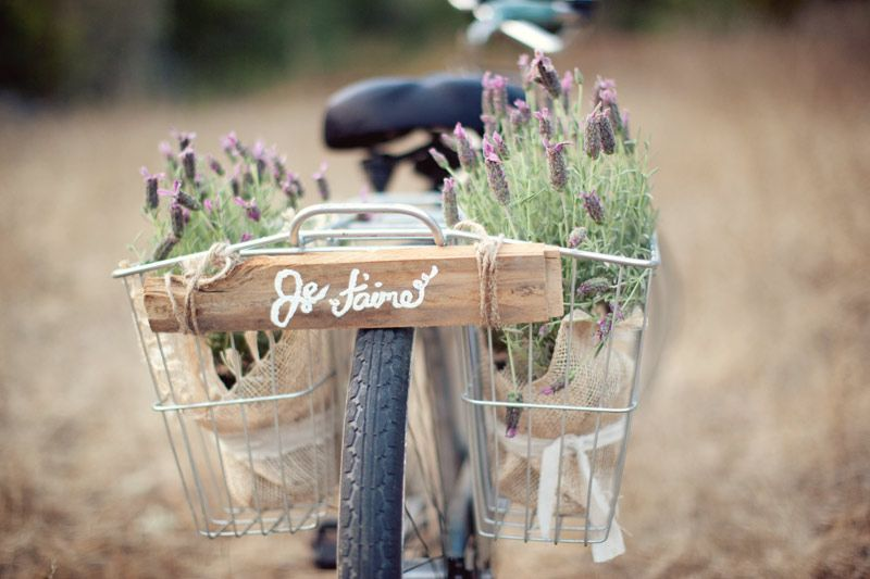 E quando 2 paixões se juntas????? Bicicleta e lavandas !!!!