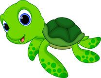 Cute turtle cartoon Royalty Free Stock Images Cute