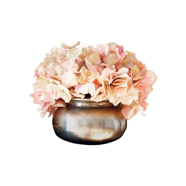 stylefruits ❤ liked on Polyvore featuring floral and flower arrangements