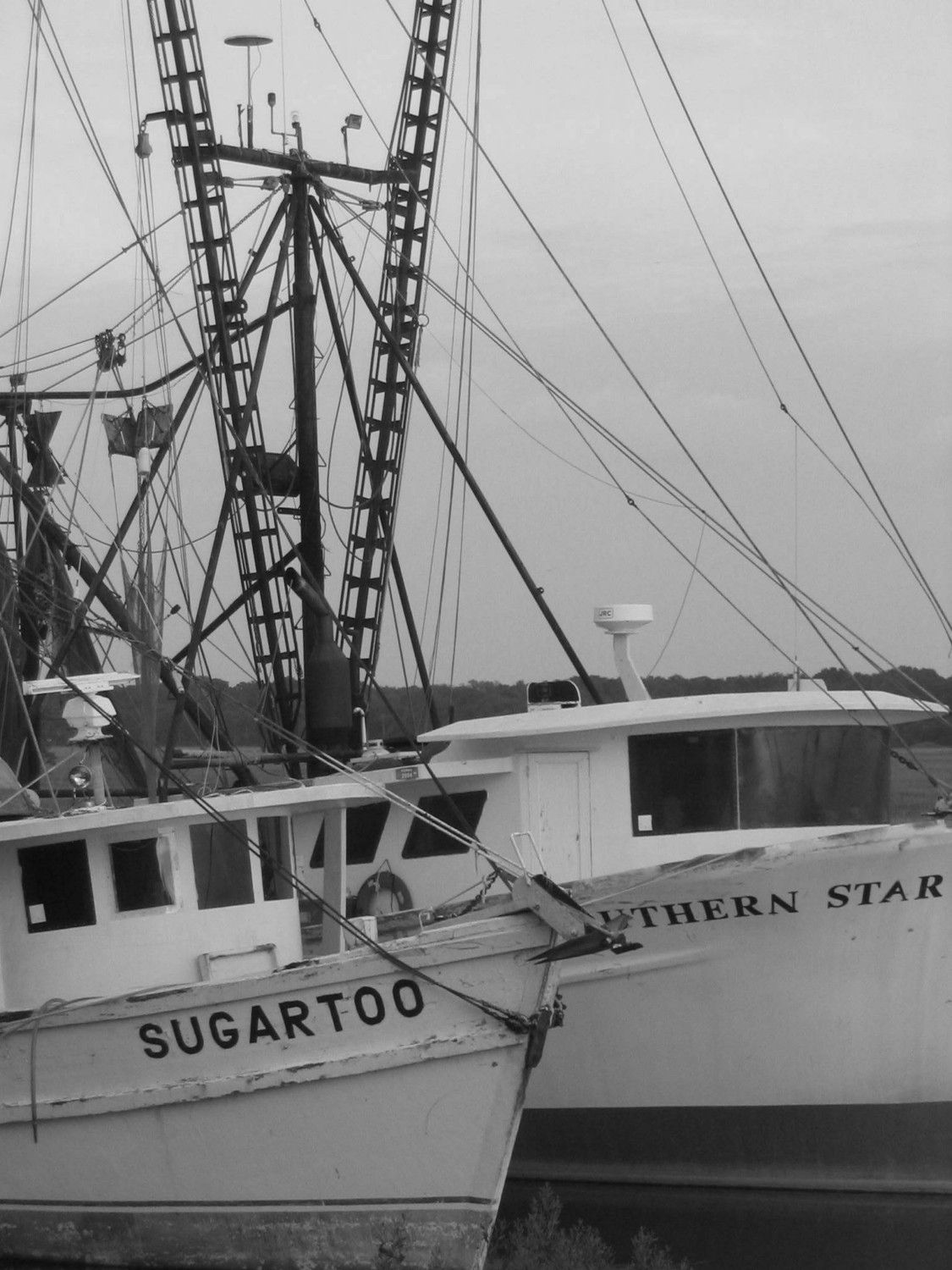 Shrimp boats in hilton head via etsy beach for Hilton head fishing party boat