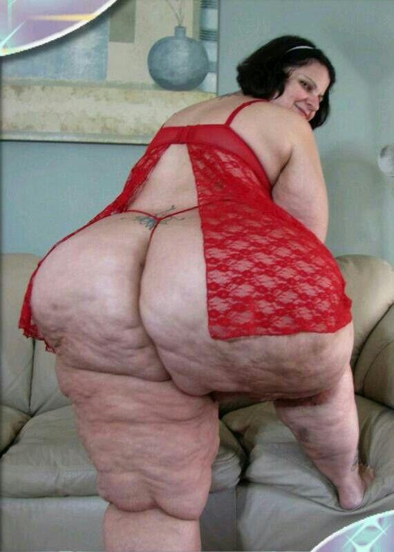 bbw booty