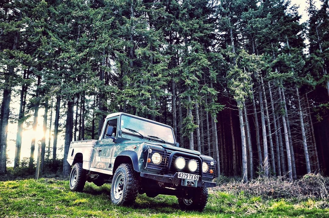 Good morning #igers #land #landrover #landroverdefender #landroverseries #landroverlife #landroverdefender110 #vintage #sun #defender #travel #forest #nature #natural #naturelovers #photography #photo #photooftheday #picoftheday #spring #4x4 #pickup #sunshine #tree #life #morning #instagood #instadaily #green #colorful by margo_gpp Good morning #igers #land #landrover #landroverdefender #landroverseries #landroverlife #landroverdefender110 #vintage #sun #defender #travel #forest #nature…