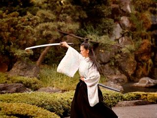 Martial Art - A Way Of Life: Women in Martial Arts & the Male Chauvinists against Them...  A straight forward post about respecting fellow artists despite strength, age, race, gender, etc. An interesting blog. Worth a look.