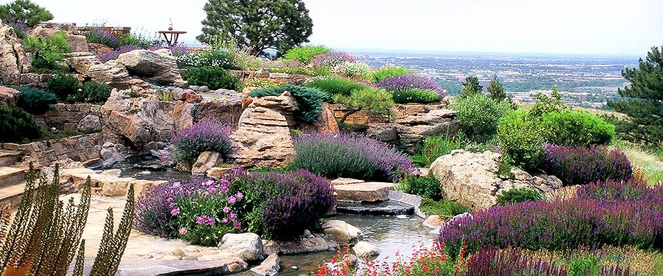 High-End Luxury Garden Design/Build, Mountain Xeriscape Landscape