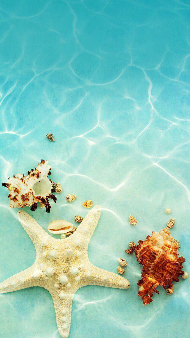 Wallpaper iPhone Sommer  -  - #hintergrundbilder