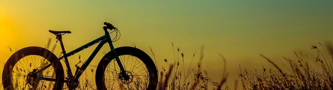 Make Money Today By Selling Your Used Bicycle Find Your Bicycle