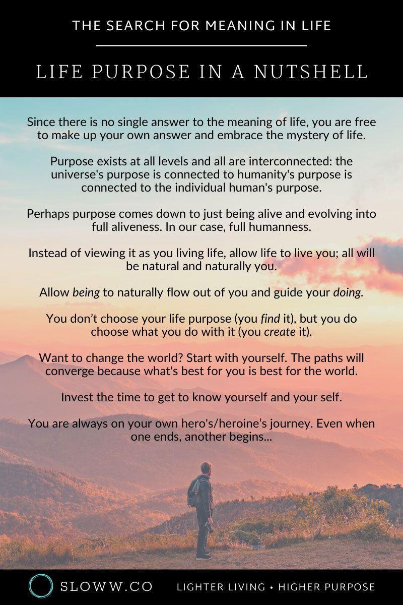 I searched life purpose read 100 articles here are