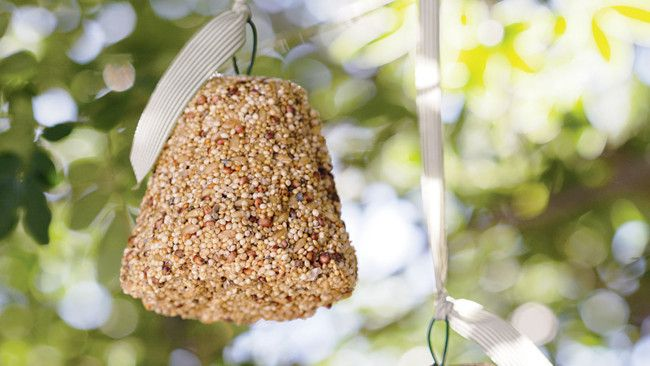 How To Make A Birdseed Bell Garden Bird Feeders Birds Bird
