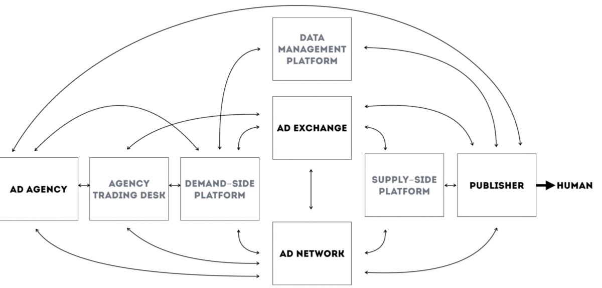 Luxury Information On Stingray Diagram Adornment - Simple Wiring ...