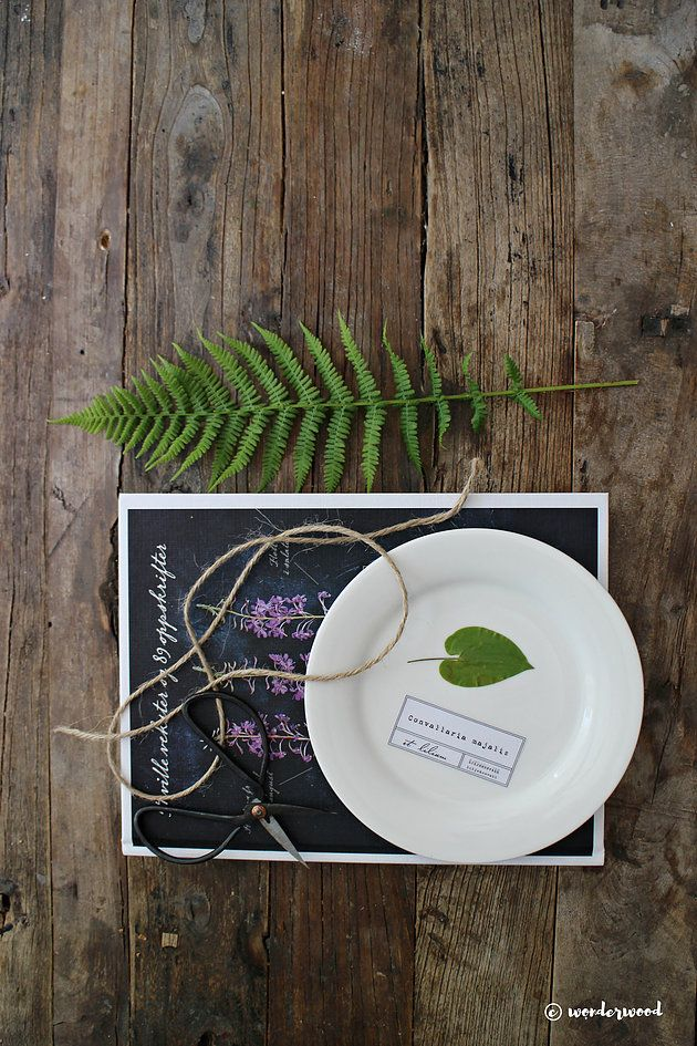 Wonderwood: DIY Botanical plates TUTORIAL